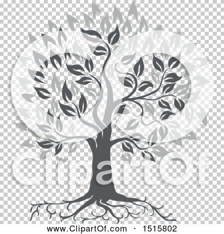 Transparent clip art background preview #COLLC1515802