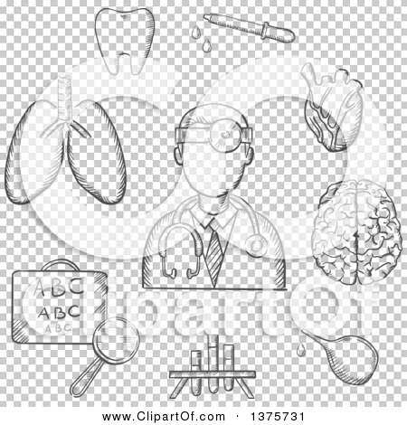 Transparent clip art background preview #COLLC1375731