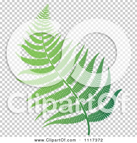 Transparent clip art background preview #COLLC1117372