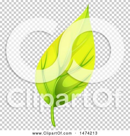Transparent clip art background preview #COLLC1474213