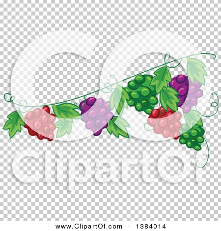 Transparent clip art background preview #COLLC1384014
