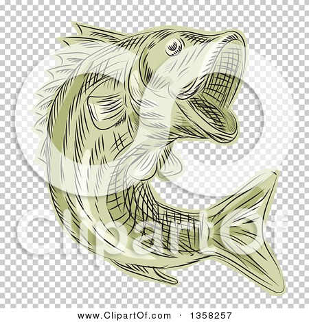 Transparent clip art background preview #COLLC1358257
