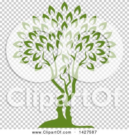 Transparent clip art background preview #COLLC1427587