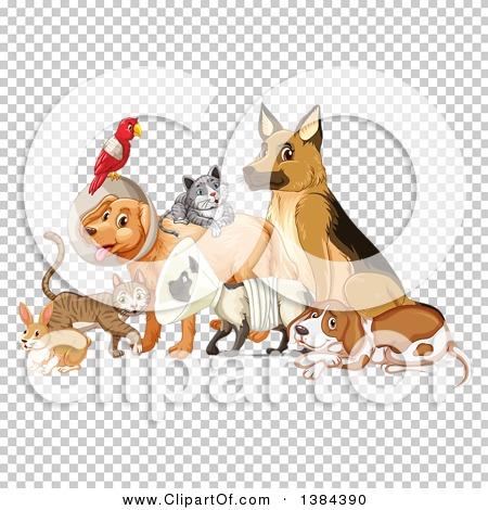 Transparent clip art background preview #COLLC1384390