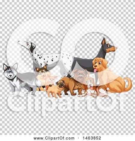 Transparent clip art background preview #COLLC1463852