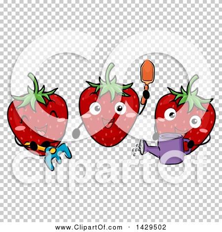 Transparent clip art background preview #COLLC1429502