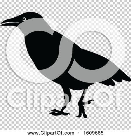 Transparent clip art background preview #COLLC1609665