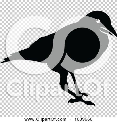 Transparent clip art background preview #COLLC1609666