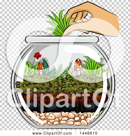 Transparent clip art background preview #COLLC1446610