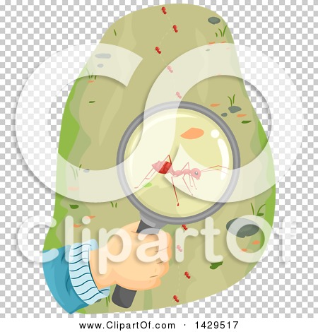 Transparent clip art background preview #COLLC1429517