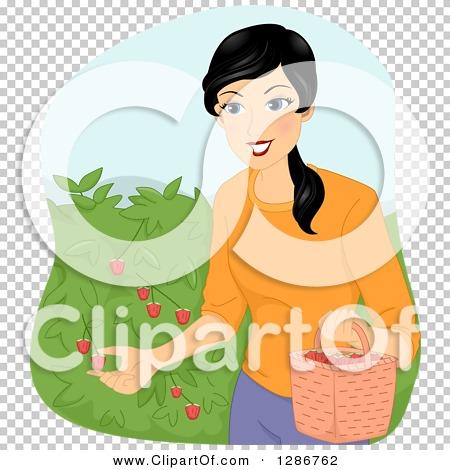 Transparent clip art background preview #COLLC1286762