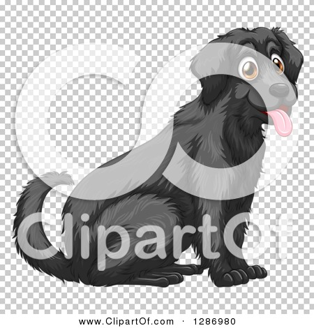 Transparent clip art background preview #COLLC1286980