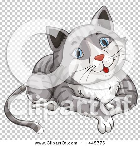 Transparent clip art background preview #COLLC1445775