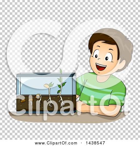 Transparent clip art background preview #COLLC1438547