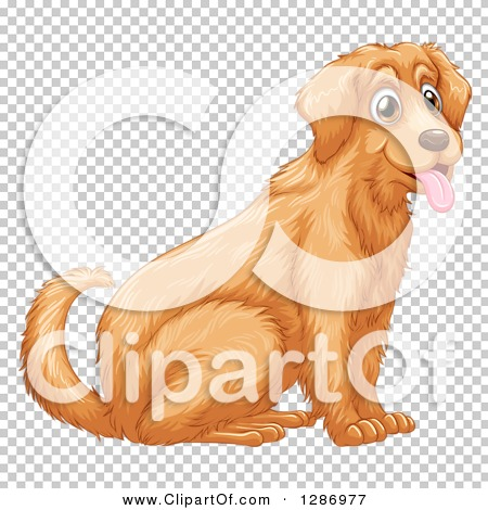 Transparent clip art background preview #COLLC1286977