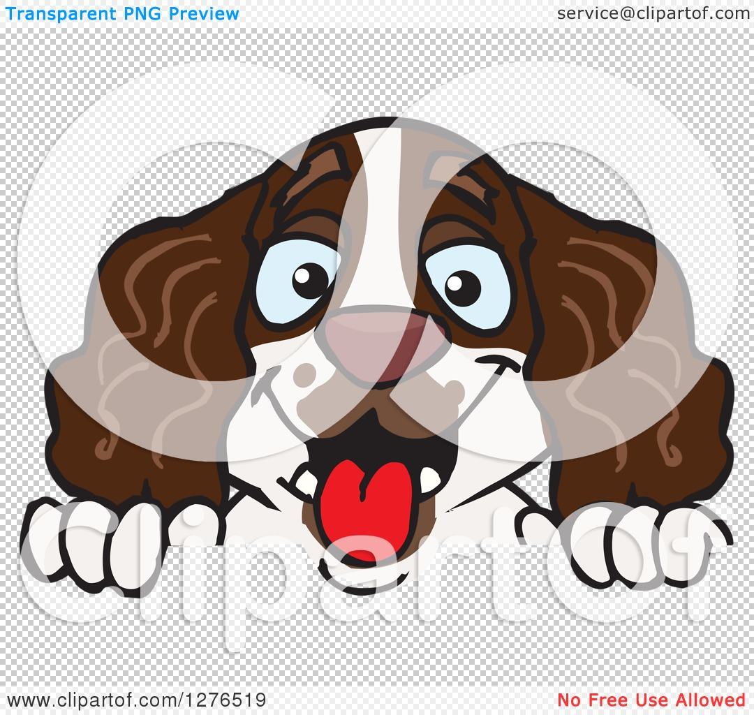 Clipart of a Happy English Springer Spaniel Peeking over a Sign ...