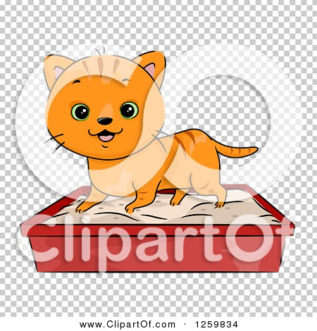 Transparent clip art background preview #COLLC1259834