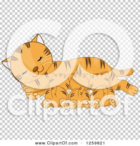 Transparent clip art background preview #COLLC1259821