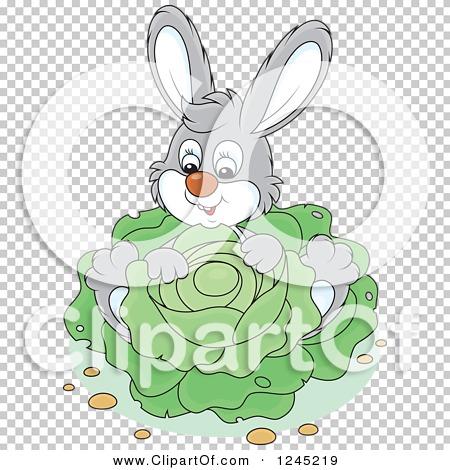 Transparent clip art background preview #COLLC1245219