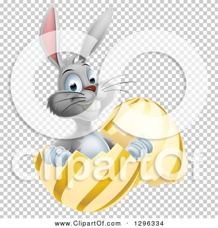 Transparent clip art background preview #COLLC1296334