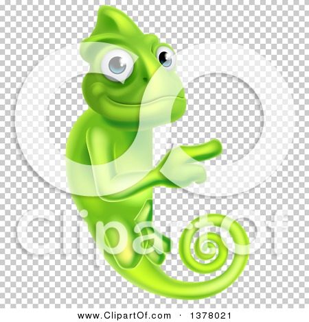 Transparent clip art background preview #COLLC1378021