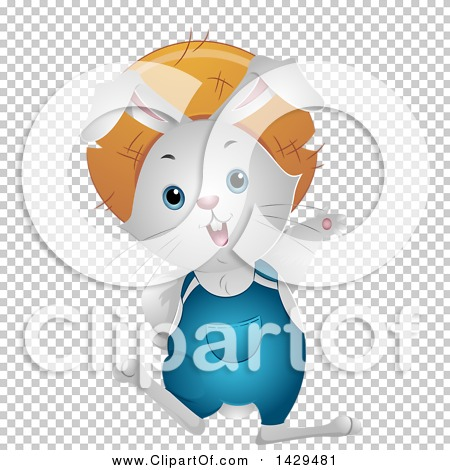 Transparent clip art background preview #COLLC1429481