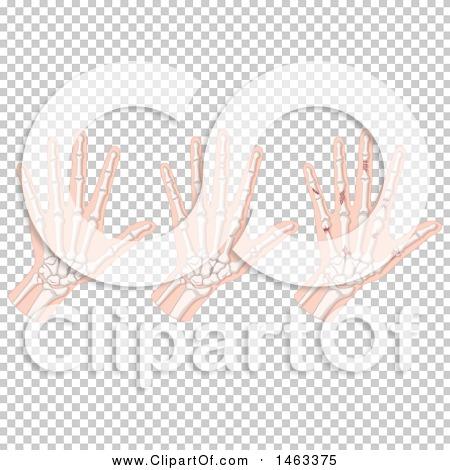 Transparent clip art background preview #COLLC1463375