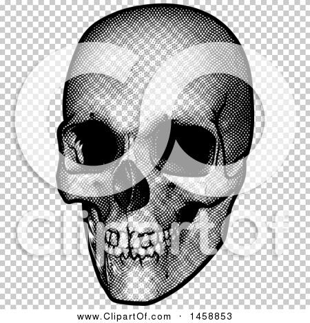 Transparent clip art background preview #COLLC1458853