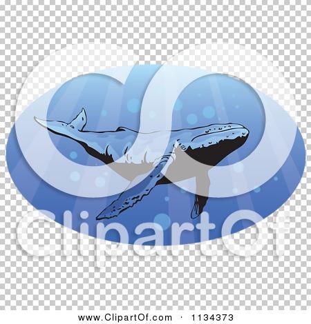 Transparent clip art background preview #COLLC1134373