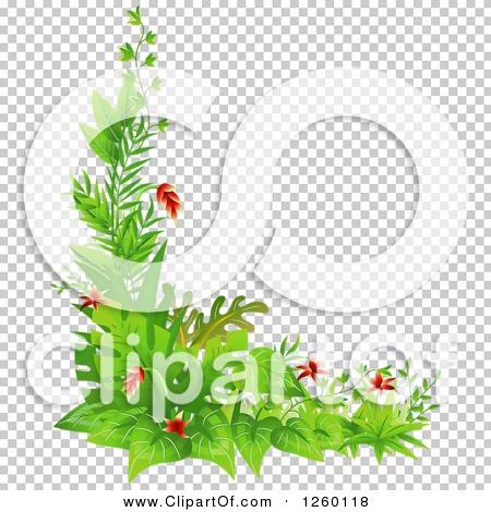 Transparent clip art background preview #COLLC1260118
