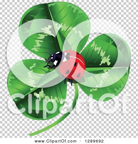 Transparent clip art background preview #COLLC1289692