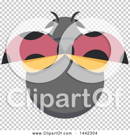Transparent clip art background preview #COLLC1442304