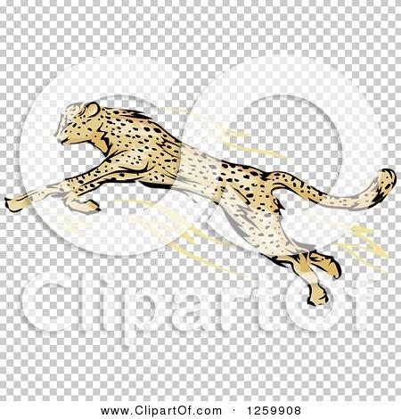 Transparent clip art background preview #COLLC1259908