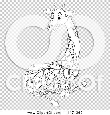 Transparent clip art background preview #COLLC1471369