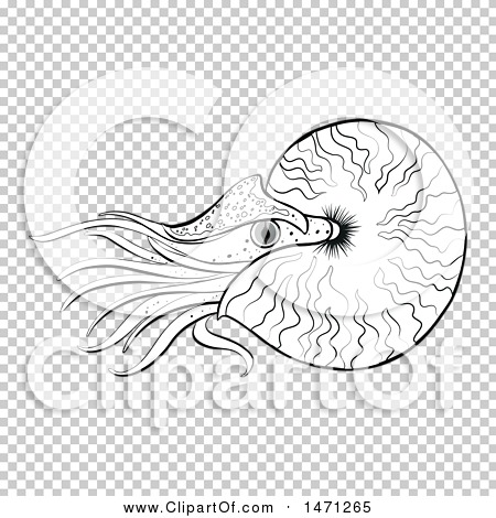 Transparent clip art background preview #COLLC1471265