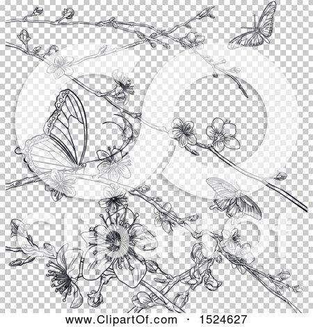 Transparent clip art background preview #COLLC1524627
