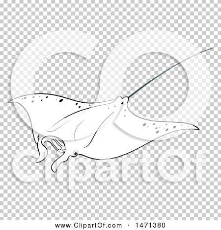 Transparent clip art background preview #COLLC1471380