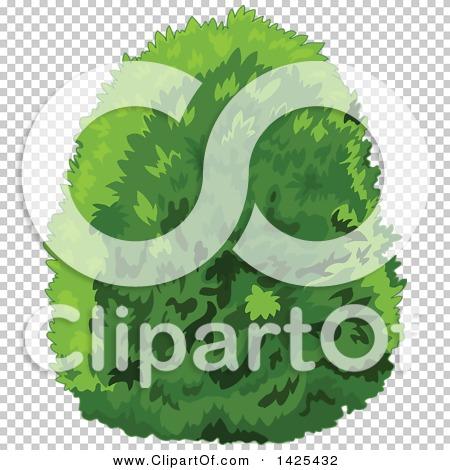 Transparent clip art background preview #COLLC1425432