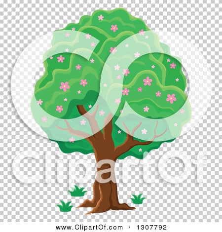 Transparent clip art background preview #COLLC1307792