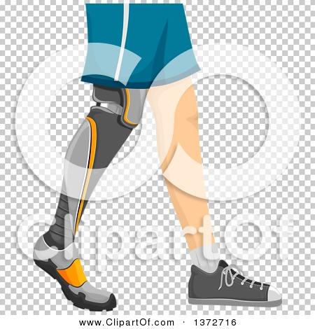 Transparent clip art background preview #COLLC1372716