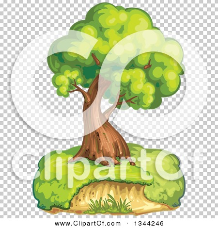 Transparent clip art background preview #COLLC1344246