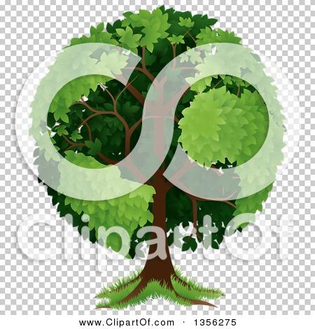 Transparent clip art background preview #COLLC1356275