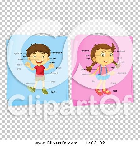 Transparent clip art background preview #COLLC1463102