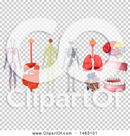 Transparent clip art background preview #COLLC1463101