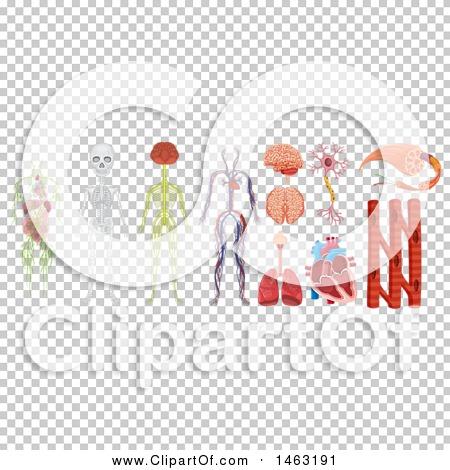 Transparent clip art background preview #COLLC1463191