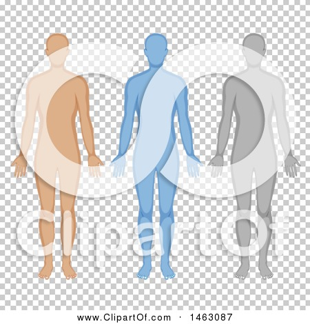 Transparent clip art background preview #COLLC1463087