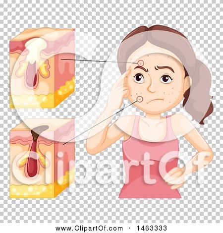 Transparent clip art background preview #COLLC1463333