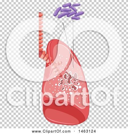 Transparent clip art background preview #COLLC1463124
