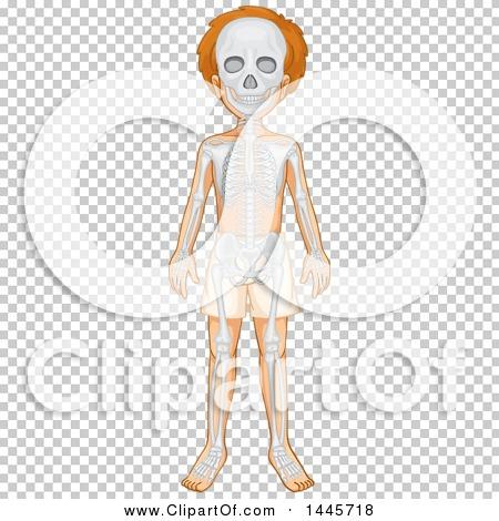 Transparent clip art background preview #COLLC1445718