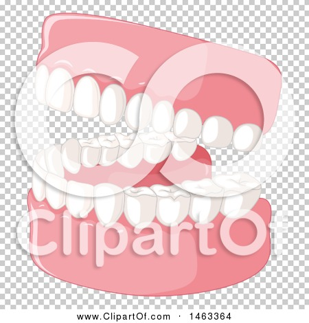Transparent clip art background preview #COLLC1463364